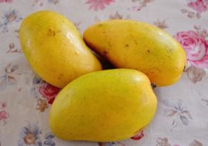フィリピン産のマンゴー